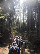 小谷古民家春から夏の終わり6塩の道古道.jpg