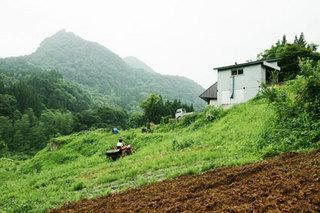 小谷村古民家再生畑と赤いトラクター.jpg